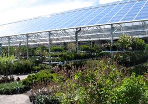 gardencenter